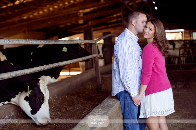 nh-farm-engagement-photos-05