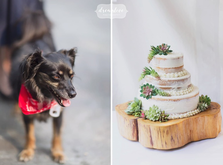 Rustic wedding inspiration for a naked cake on a large wooden block.