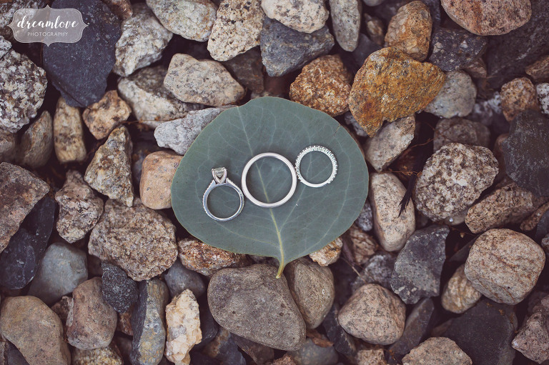 Unique photo of the wedding rings on a eucalyptus leaf at the Inn on Main in Wolfeboro.