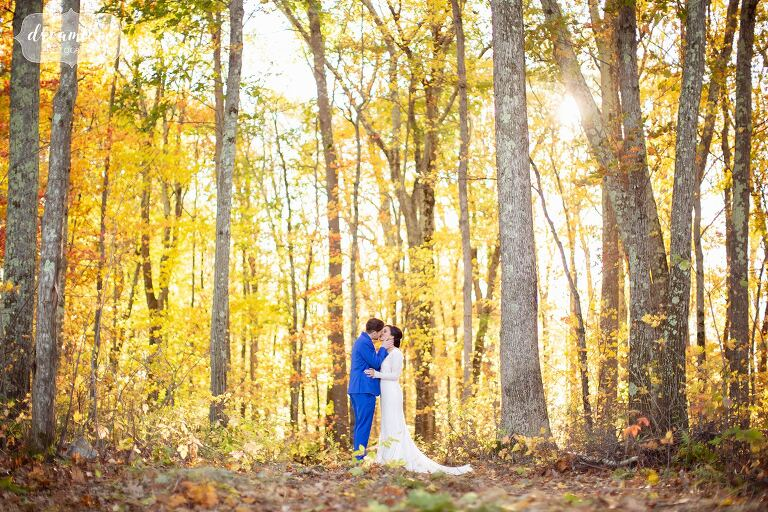 Bride and groom stand in the middle of yellow fall foliage woods at Zukas Barn.