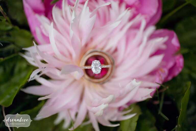 Bright pink peony with wedding engagement rings at Lyman Estate.