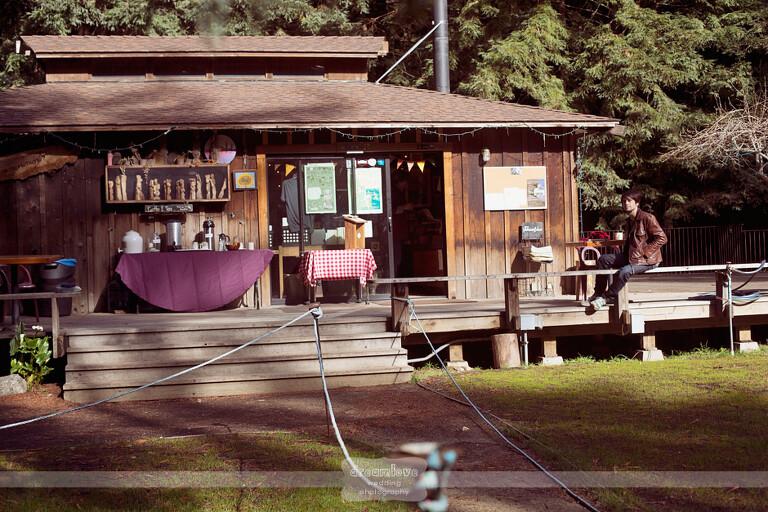 big-sur-redwoods-ca-13