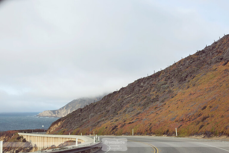 big-sur-redwoods-ca-18