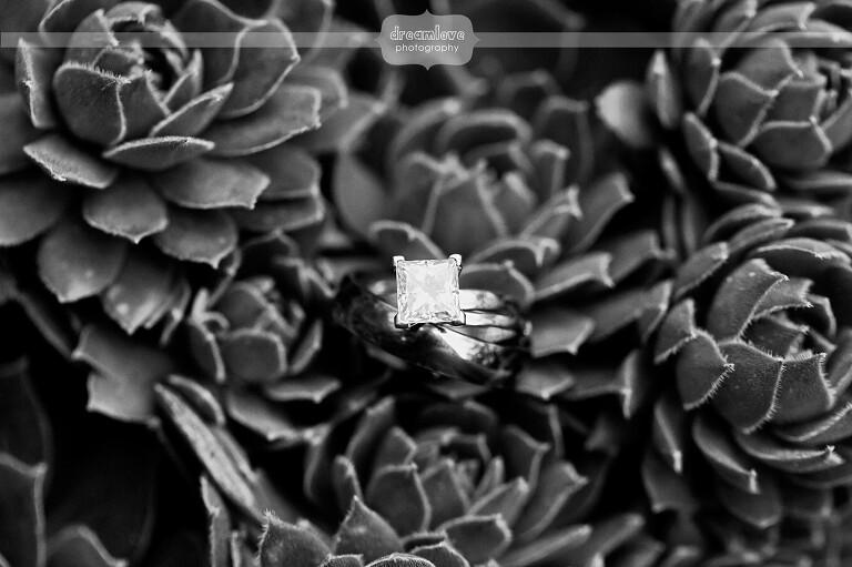 nature-MIT-wedding-photography-41