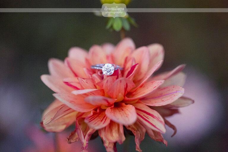 elm-bank-garden-wedding-41