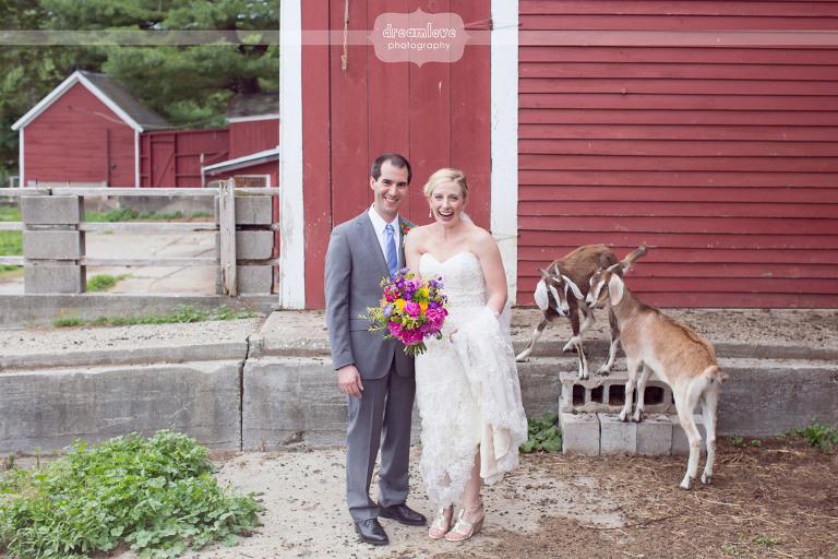 alysons-orchard-nh-wedding-40