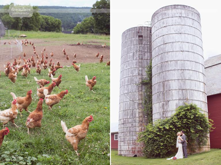 alysons-orchard-nh-wedding-43