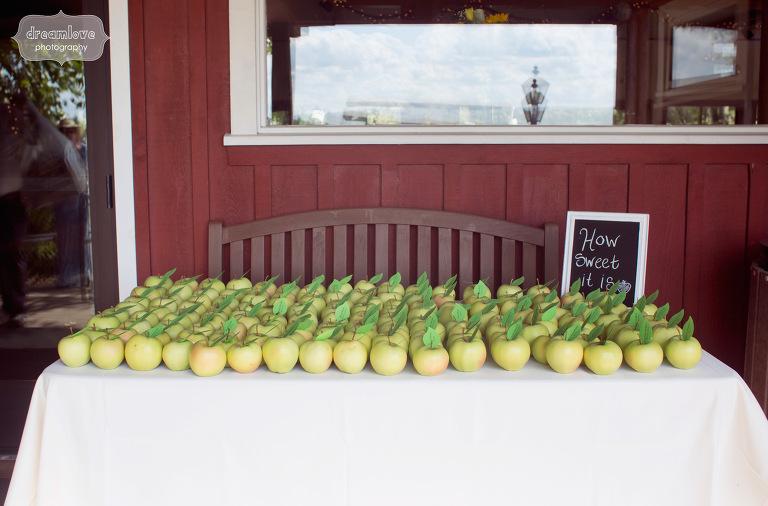 apple-orchard-wedding-nh-07