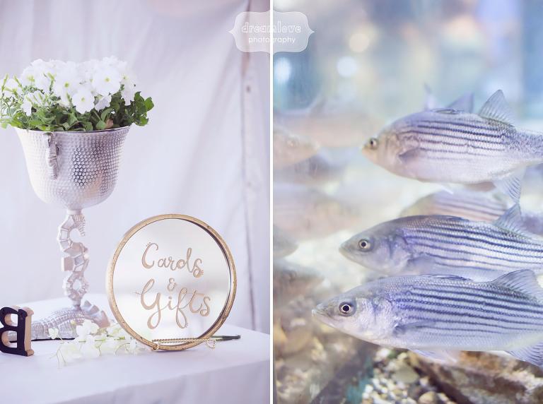 odiorne-state-park-nh-wedding-37