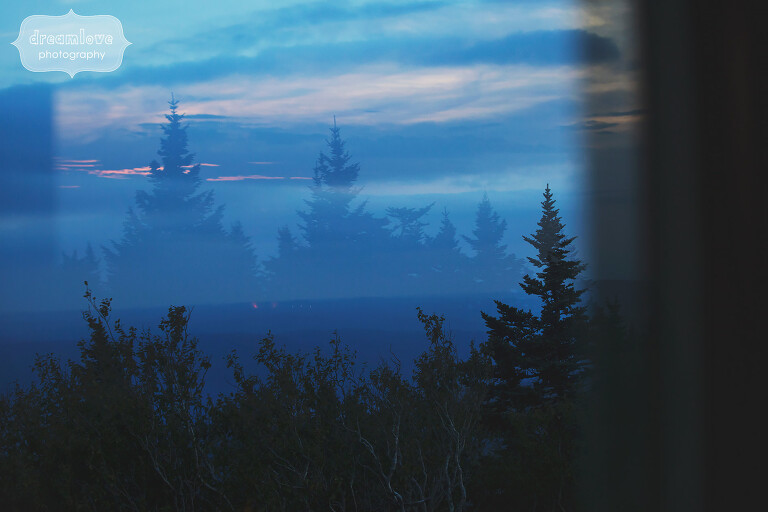 Fine art wedding photo of pine trees and blue light at Mt. Greylock, MA.