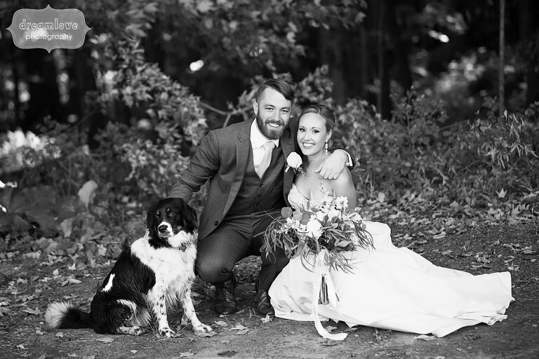 Portrait of the bride, groom and their border collie in the woods at the Warfield House Inn venue.