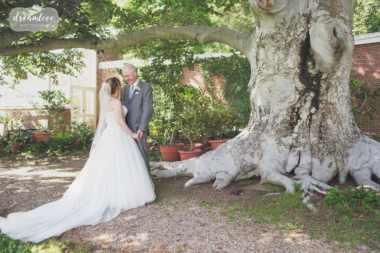 The bride and groom kiss under a huge old beech tree at the Lyman Estate historic property in MA.
