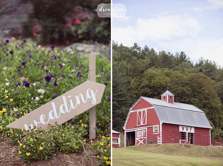 Barn animals at the red barn in western MA for this outdoor mountain wedding venue.