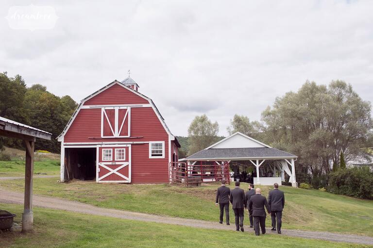 The groomsmen walk toward the wedding reception barn at the Warfield House Inn in western MA.