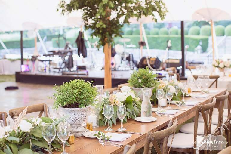 Sailcloth tent with potted plants at One Barn Farm reception.