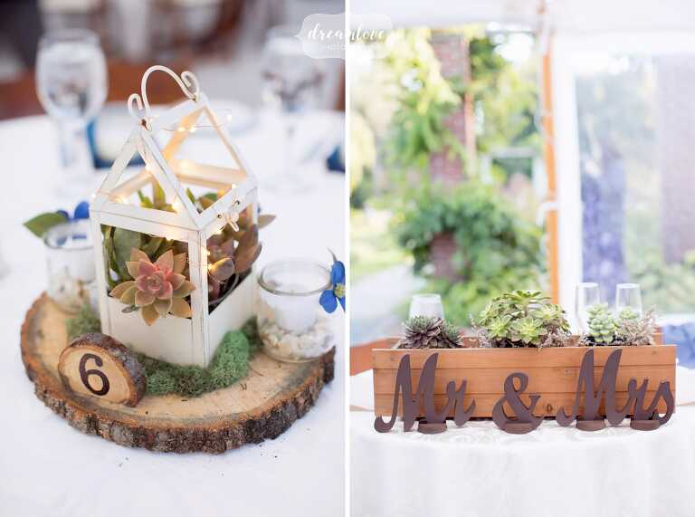Succulent centerpieces at this Glen Magna Farms wedding in October.