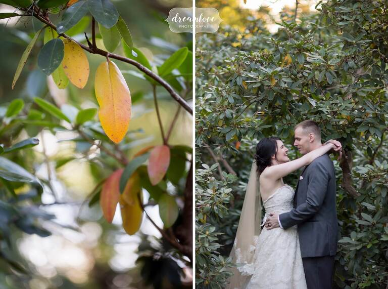 Forest bride and groom portraits at the Glen Magna Farms wedding venue in Danvers, MA.