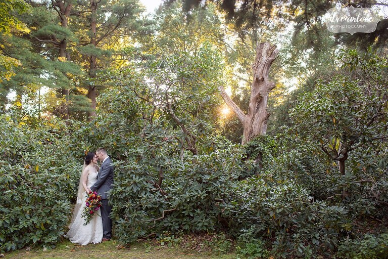 Natural wedding photographer captures sunset woodsy pictures at Glen Magna Farms in MA.