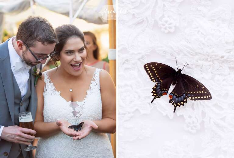 Bride holds a butterfly at Bradley Estate cocktail hour.