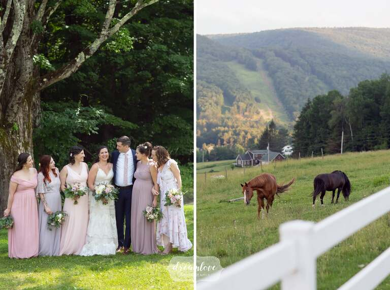 Horses at this western Mass wedding in Charlemont.